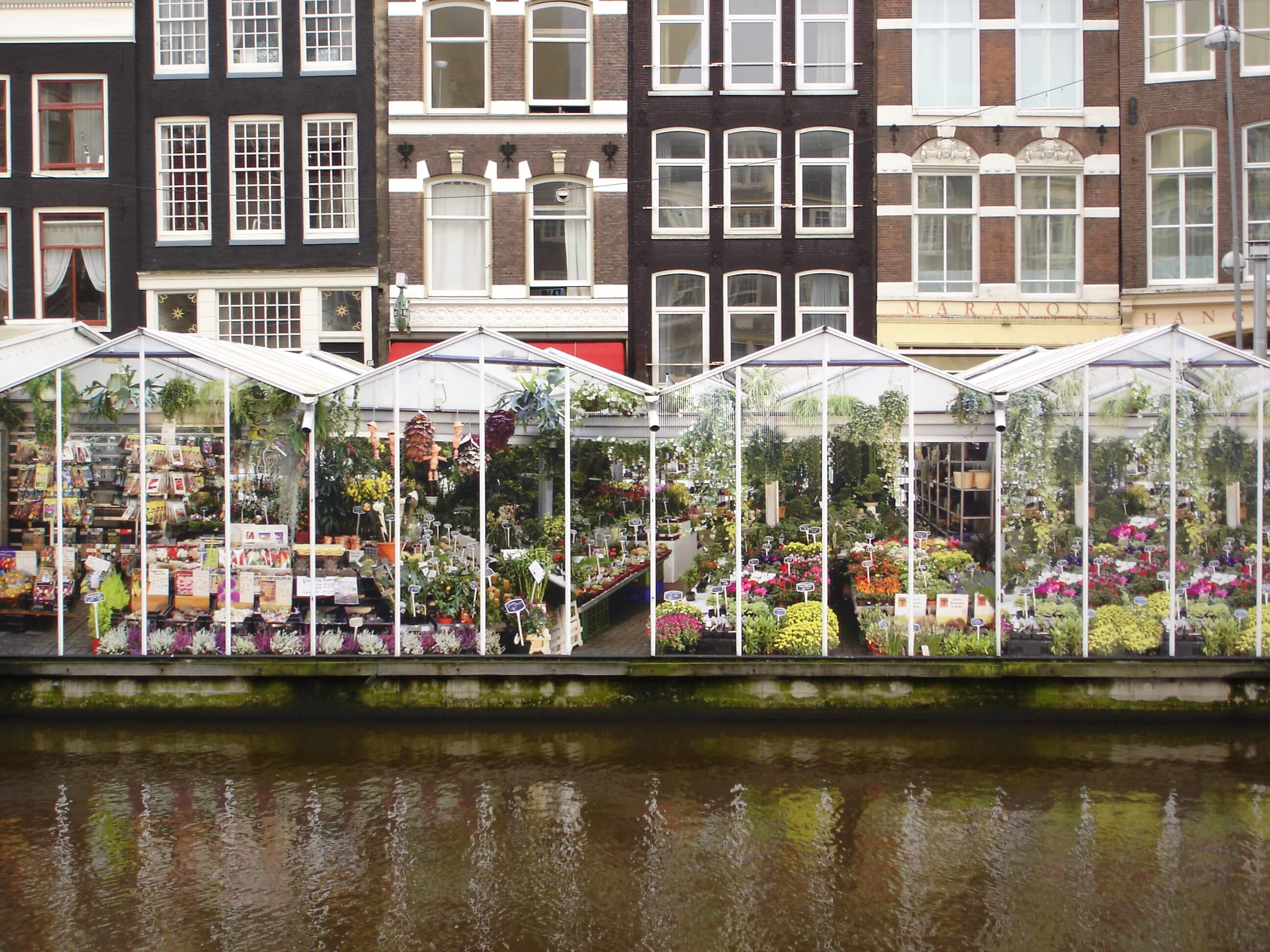 mercado de las flores en un día en Ámsterdam